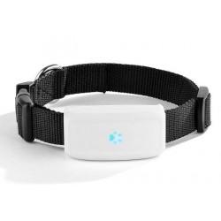 BENTECH A700 GPS tracker dla psów i dalsze