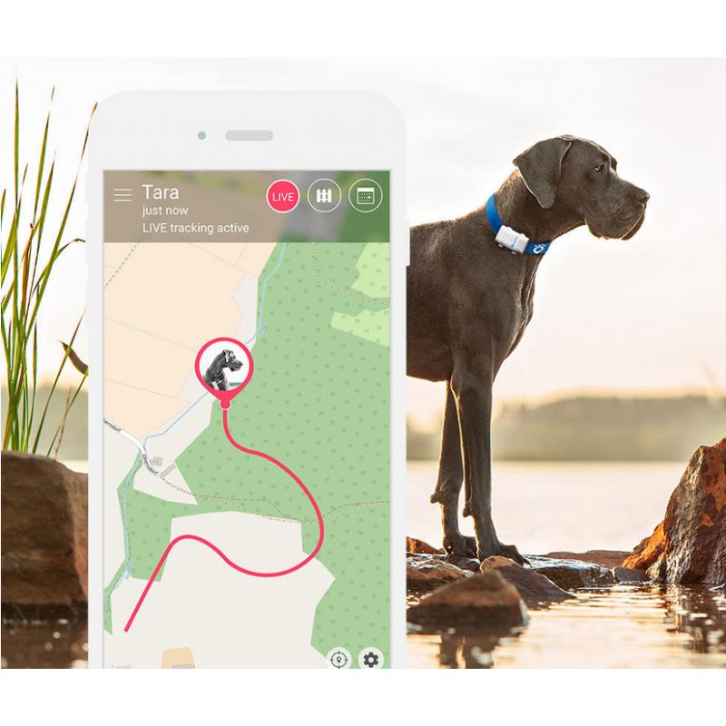 Lokalizator Tractive XL GPS dla zwierząt domowych