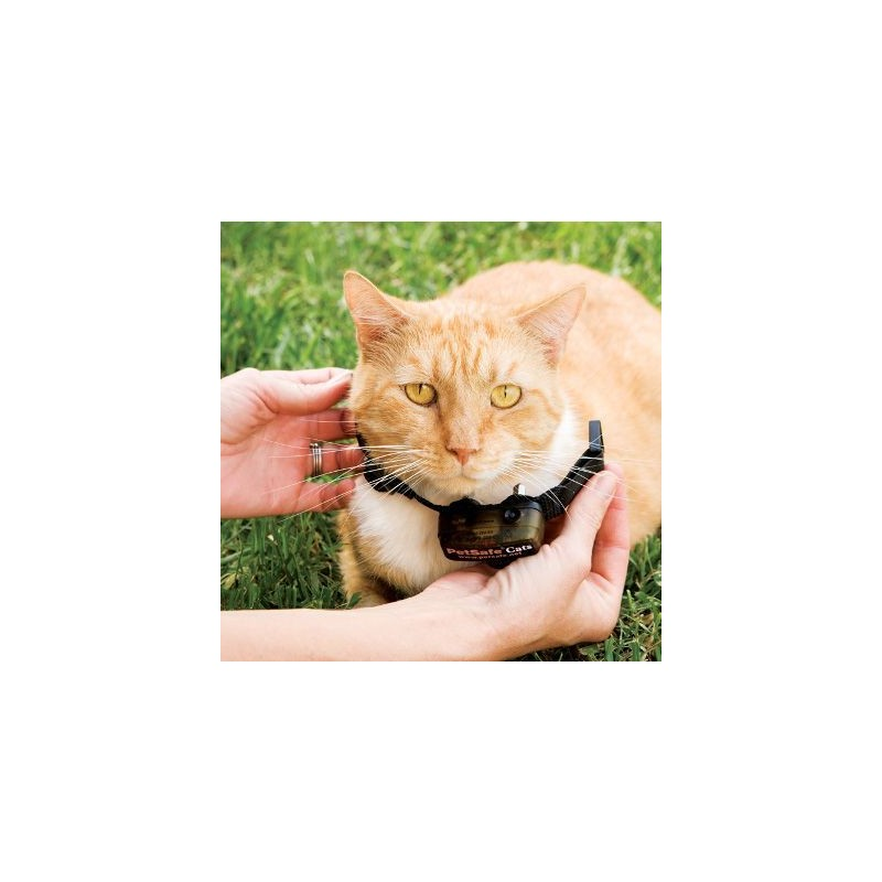 Elektryczny pastuch PETSAFE dla kotów